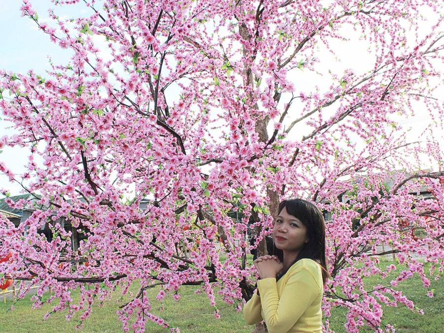 bunga-mei-hwa-singkawang