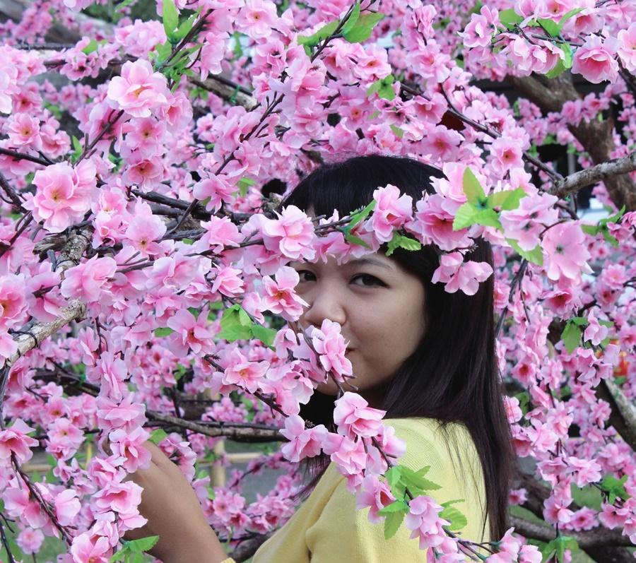 diantara-bunga-mei-hwa2