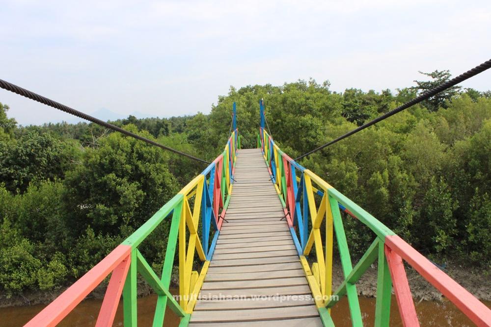 jembatan_pelangi_hutan_mangrove