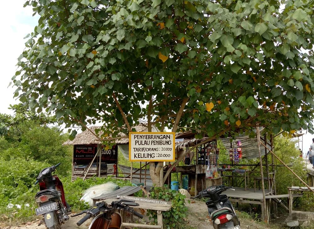 tarif_penyeberangan_pulau_penibung_dikawasan_mempawah_mangrove_conservation