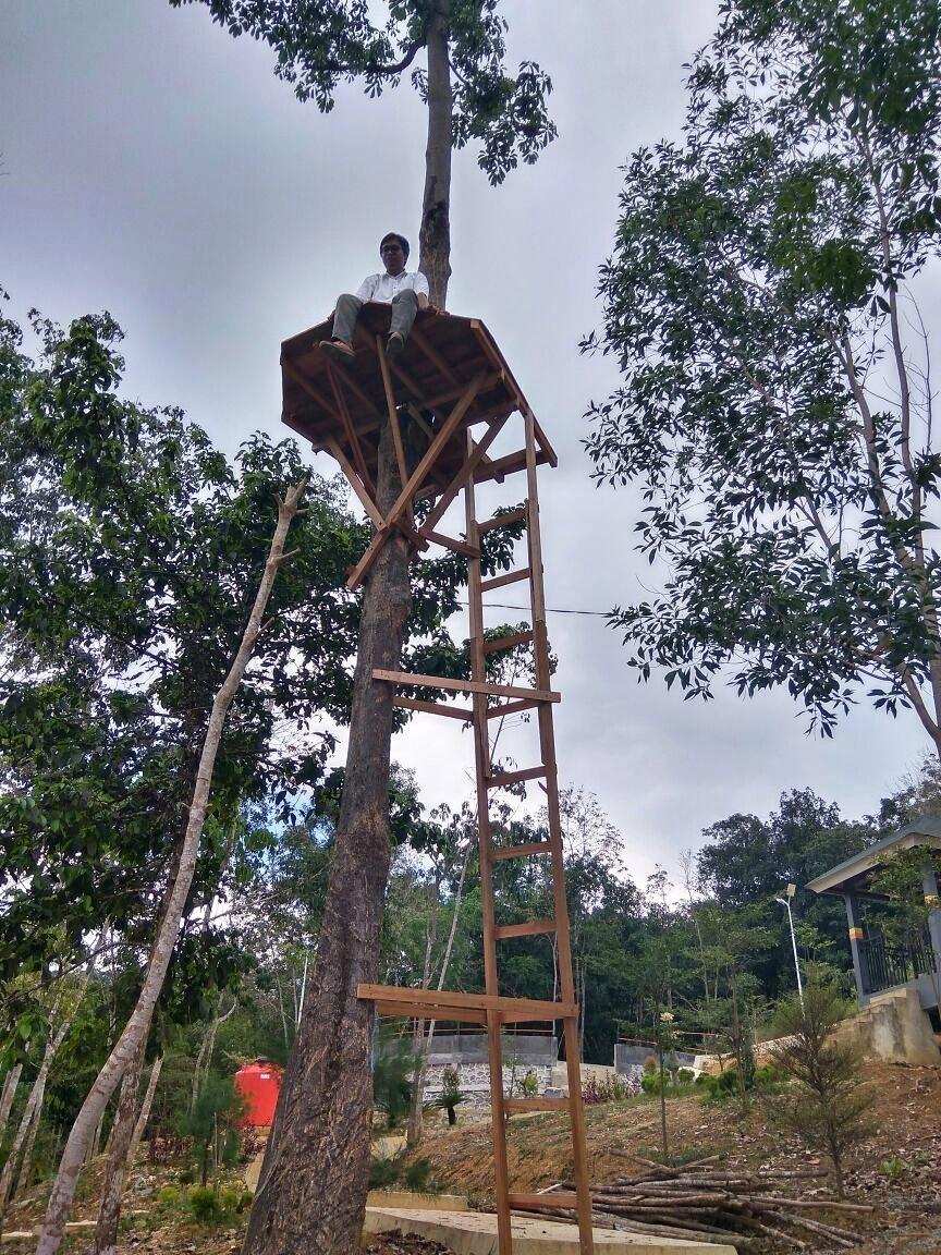 uji_coba_naik_rumah_pohon