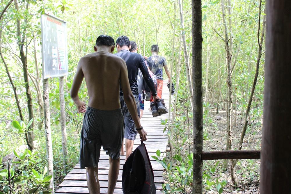 volunter_penanaman_mangrove